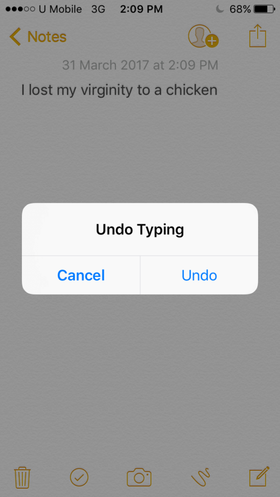 Undo Typing on iPhone or iPad